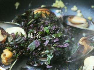 紫苏炒青口,半分钟后放入紫苏。