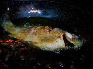 家常烧鲫鱼,炸的时候用锅铲不停的把油淋到鱼身上,大约三分钟左右至熟 将炸好的鲫鱼捞出