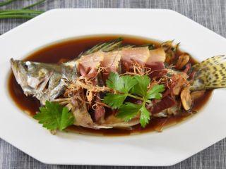 鲜上加鲜的做法——清蒸桂鱼,再用香菜点缀即可上桌