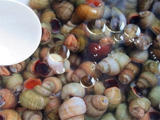 开胃麻辣螺蛳,加几滴芝麻油,泡一晚上,春季很多螺蛳里面有很多小螺蛳,用一些油让大螺蛳吐出小螺蛳和脏气,螺蛳处理还真是一道很麻烦的工序,处理简单就会不干净,所以这道菜基本被处理过程占了一大部分时间,为了吃这道美食,你可要耐住性子坚持下去哦
