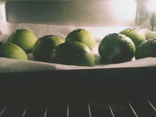 【网上厨房独家】抹茶肉松(蜜豆)小餐包,烤箱上下火180度预热,中层大约12min,为了防止上色过深可以临出炉时快速加盖锡纸