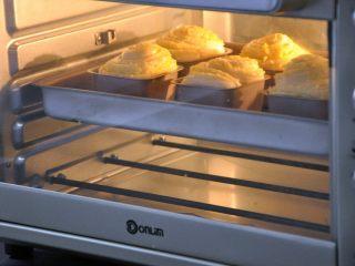淡奶油椰蓉面包卷, 放入预热好的烤箱,上下火165度,时间20分钟左右。(时间与温度请参照自家烤箱脾气),为避免面包卷上色过深,烤10分钟后在表面加盖一张锡纸