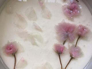 樱花慕斯,镜面用125克水加25克糖加5克吉利丁粉,加热融化,凉凉后倒入冷藏好的慕斯上,点缀上樱花,在入冰箱冷藏两个小时以上即可,水不能太少,否则花瓣漂不起来