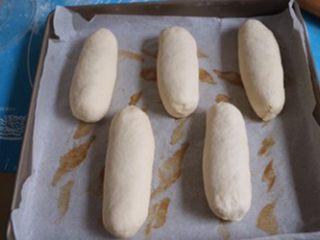 肉松面包,整好型的面包放在温暖湿润的地方开始二次发酵