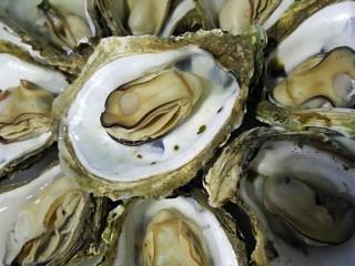 水蒸海蛎子+#人民的美食#,一个个打开码在盘子上