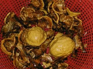立夏的固肾食方:#核桃壳分心木煮鸡蛋#(创建于5/5~2017),把核桃壳和分心木洗净,滤干水。