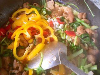 香辣肥肠锅,放入香菜小葱白菜辣椒灯笼椒 和剩下的蒜 翻煮一下关火