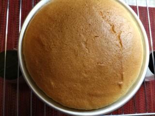 烘焙入门戚风蛋糕,蛋糕出炉啦,高处震动下排空底部热蒸汽,防止底部太潮湿。