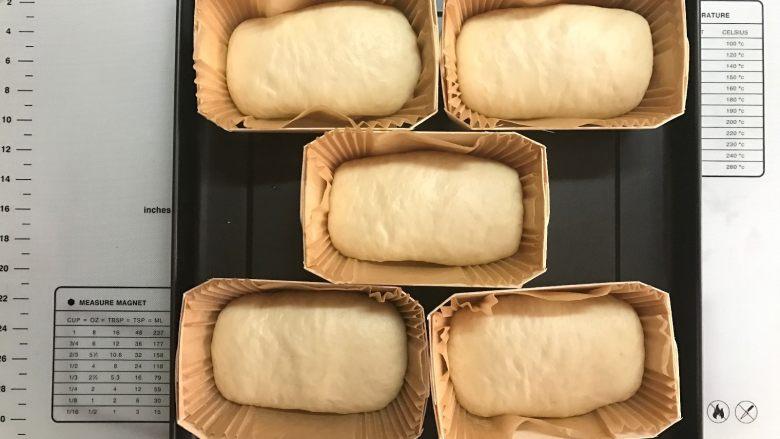 黄桃香酥面包,发至面团3倍大。