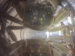 螃蟹螃蟹+#人民的美食#,刷洗干净之后可以放清水里再吐一会沙,两个小家伙活跃的,我都舍不得吃啦!