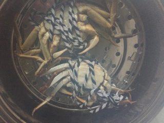 螃蟹螃蟹+#人民的美食#,蒸锅水烧开后,肚子朝上摆好螃蟹。(看看看,腿没绑紧全挣脱出来了。)赶紧盖上锅盖,约两分钟后转小火15分钟即可