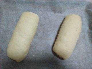 酸奶软欧,依次做好两个,放入铺有油纸的烤盘;