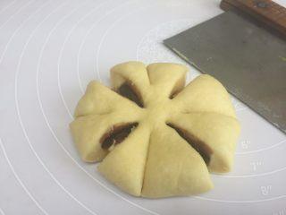 花朵豆沙面包,收好口后,收口朝下,按压成饼状,用刀切8刀中间不要切断;