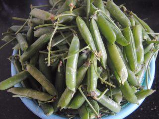 豌豆猪皮冻,豌豆挑选颗粒饱满的