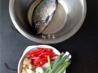 豆瓣鱼,鲫鱼请店家宰杀后,用适量盐、料酒抹匀,腌制片刻;老姜、大蒜、小米辣、大葱洗净;