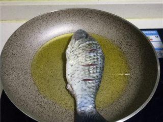 豆瓣鱼,放入鲫鱼,用中小火煎黄;