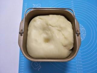 蜂蜜脆底小面包,发好的面用手指粘粉戳一个洞。无明显的回弹说明发酵好了。
