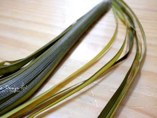 蜜枣白米甜粽,准备棕榈枝条作为包扎带。 摘取新鲜的棕榈枝条风干后, 和粽叶一起煮开浸泡过夜。 如果没有的话,就用棉纱线包扎也可以。