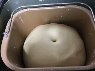 烫种牛奶吐司,判断面团是否发酵好的方法,就是十指沾少许面粉,面团中间戳个洞,不回缩说明发酵可以了,若马上回缩说明需要继续发酵,若塌陷说明发酵过了。