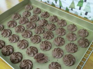 真正有巧克力的巧克力曲奇,成品图