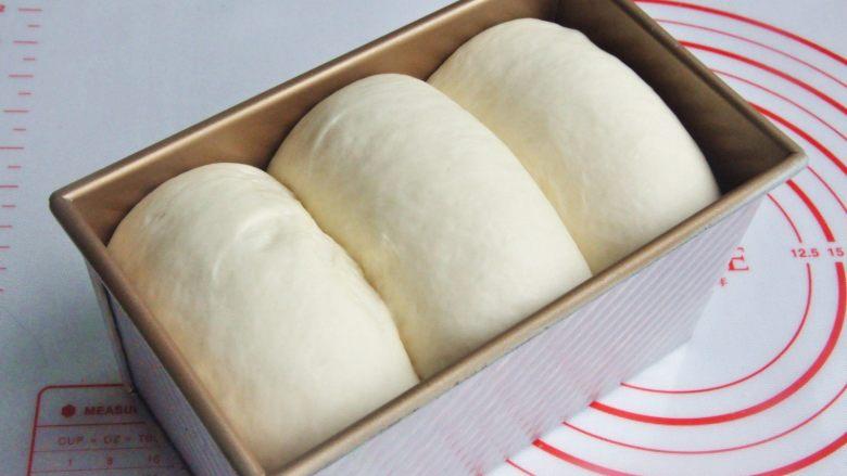 玉米沙拉三明治,放入烤箱进行第二次发酵,38度发酵至8-9成模。
