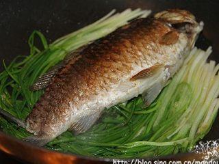 葱烧鲫鱼,加入鱼。