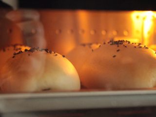 肉松面包(波兰种),15分钟后已经开始变金黄色