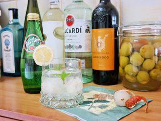 荔枝罐头+荔枝特饮(好吃不上火)               ,倒入气泡水 放入薄荷叶 插上柠檬片  喜欢酒的可以倒气泡白葡萄酒 完美