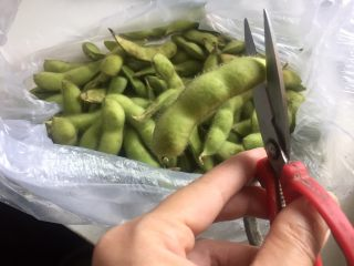糟卤毛豆,毛豆两头剪一刀,为了更好的入味。