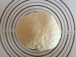 红豆沙小餐包,发酵好的面团取出来,排气静置15分钟