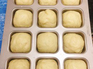 迷尔汉堡胚,把松弛后的面团放入模具中继续二发40分钟