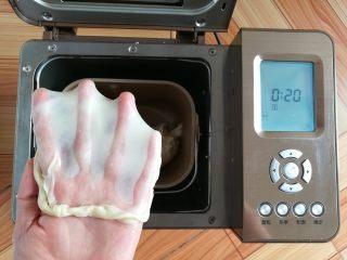 繽紛水果披薩,和面完成,順手拉一個手套膜