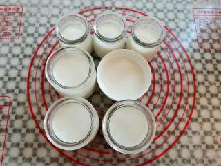 芒果酸奶(奶粉版),把混合好的酸奶半成品倒入布丁瓶里,后面要放芒果,大概倒60%满就可以了,如果不放水果的可以倒满到瓶颈处