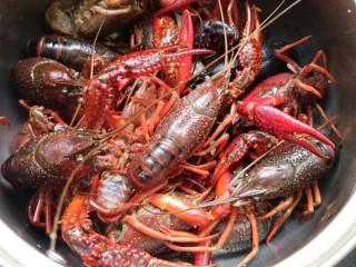 别为风情的龙虾,龙虾一定要去虾线。还有刷肚皮 我第一次做这种活的东西 真的很害怕。为了吃也是拼了,
