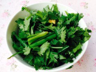 香辣花甲,香菜和小葱清洗干净后切成小段。