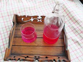 夏日果味酵素饮品