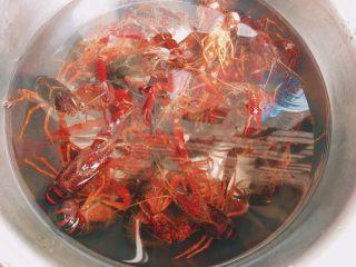 川味儿麻辣小龙虾,小龙虾用水泡一会儿 用刷子刷干净腹部并去掉虾肠