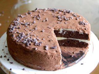 最好吃的基本巧克力蛋糕