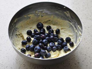 燕麦马芬,加入沥干水分的蓝莓。