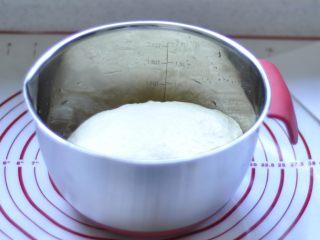 软欧包,2、然后盖上保鲜膜发酵