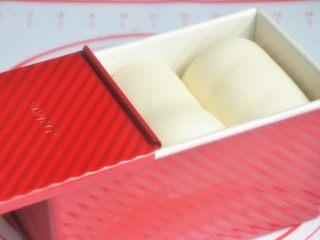 香肠吐司披萨,放入烤箱进行第二次发酵,38度发酵至8-9成模。