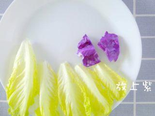 没胃口的时候,来一道酸溜溜酸奶沙拉,开始摆盘,摆上生菜、紫甘蓝