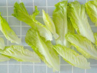 没胃口的时候,来一道酸溜溜酸奶沙拉,生菜掰成小瓣