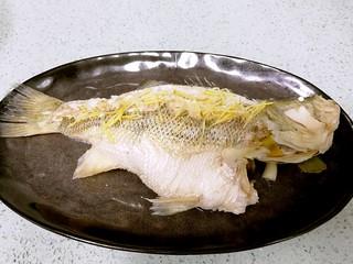 粤式清蒸鲈鱼,鱼蒸好后取出,倒去盘内浮水,摆上姜丝。