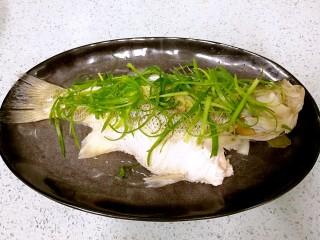 粤式清蒸鲈鱼,摆上葱丝。