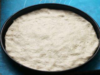 花边披萨,7.取出三分之二擀成圆饼状,放到八寸披萨盘里。
