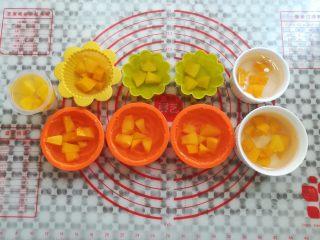 水果果冻(白凉粉版),继续倒入凉粉水到模具的9分满,放凉凝固成型