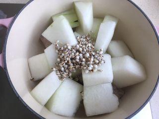 冬瓜薏米排骨汤,薏米