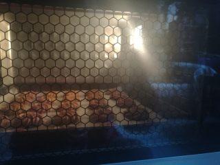 巧克力淡奶油曲奇,送入提前预热好的烤箱,以上下火175度烘烤20分钟即可。