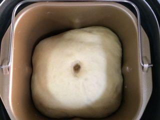 香葱芝士面包,揉至完毕后,发至2-2.5倍大。